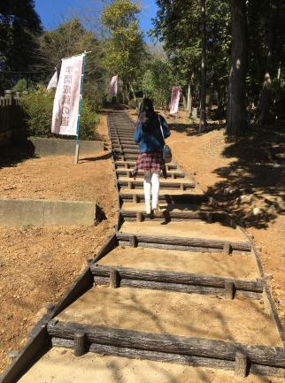 銀の馬車道福崎篇Cコース感想文-4